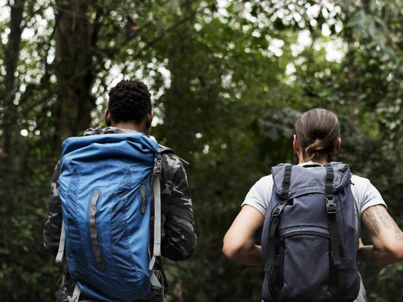 trekking-in-a-forest-PZYZ4BN-oorxg3wr9pjdwtfff0dsm59gt6f35mei6ussvgn5fk